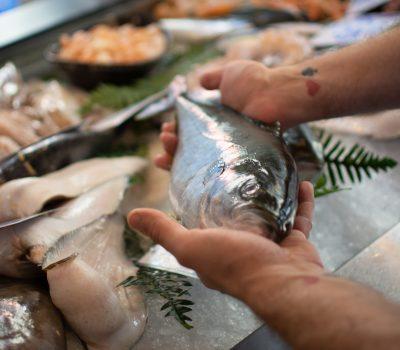 tunas pesce